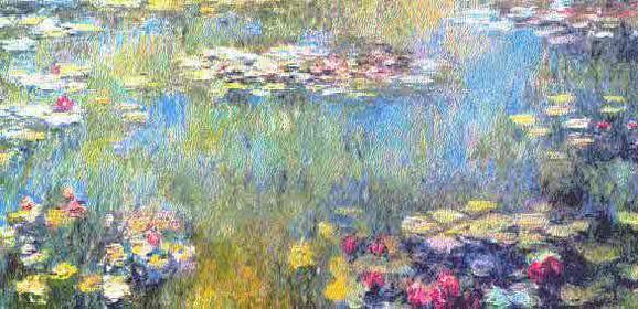 Betoverd door de waterlelies van Monet!