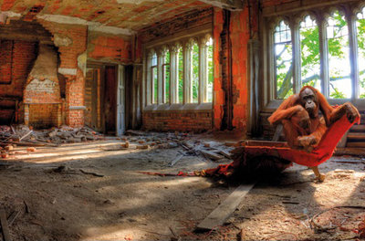Inside jungle - Fotokunst gebouw
