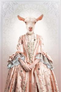 Fotokunst Classy Goat