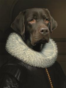 Fotokunst - Baron the Labrador