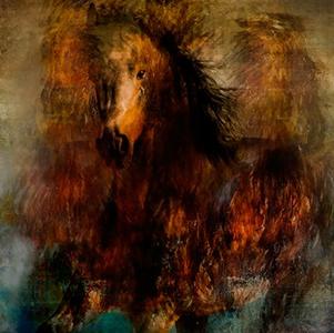 The nameless horse