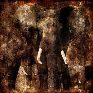 Fotokunst olifant