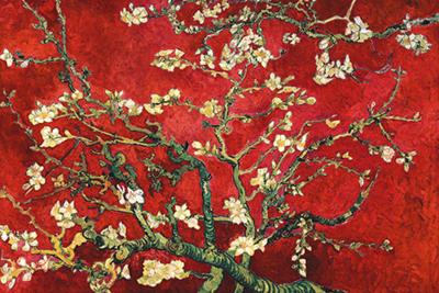 Fotokunst blossom van Gogh