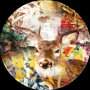 Deer | Fotokunst rond