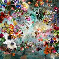Dream-river-07
