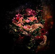 Funky-still-flower