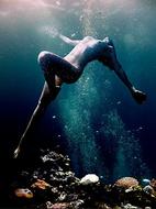 Into-the-deep-blue-sea