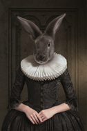 Rabbit - fotokunstwerk