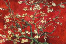 Fotokunst-blossom-van-Gogh