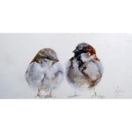 Fotokunst-vogels