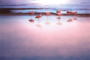 Fotokunst flamingo's_8