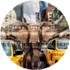 Elephant in New York | Fotokunst rond_8